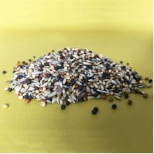 Зерновой корм для муравьев-жнецов