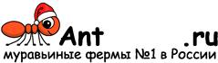 Муравьиные фермы AntFarms.ru - Чебоксары